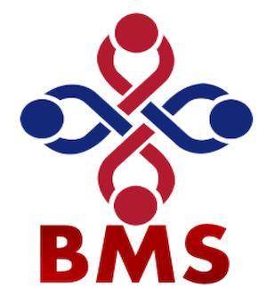 British Muslim Society